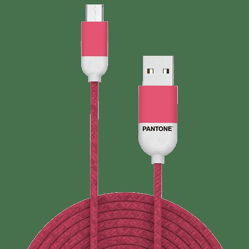 PT-MC001-5P
